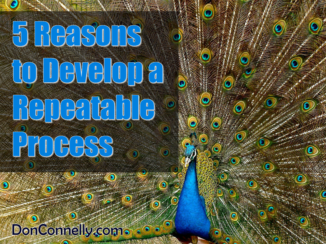 5 Reasons to Develop a Repeatable Process