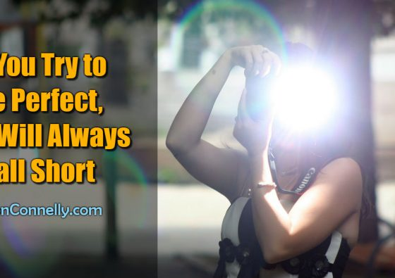 If You Try to Be Perfect You Will Always Fall Short